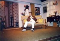 Hay Fever 1990 E